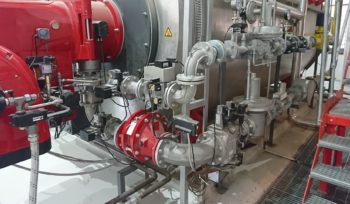 multi-fuel burners biogas use DWS
