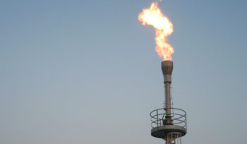 elevated flare DWS Biogas